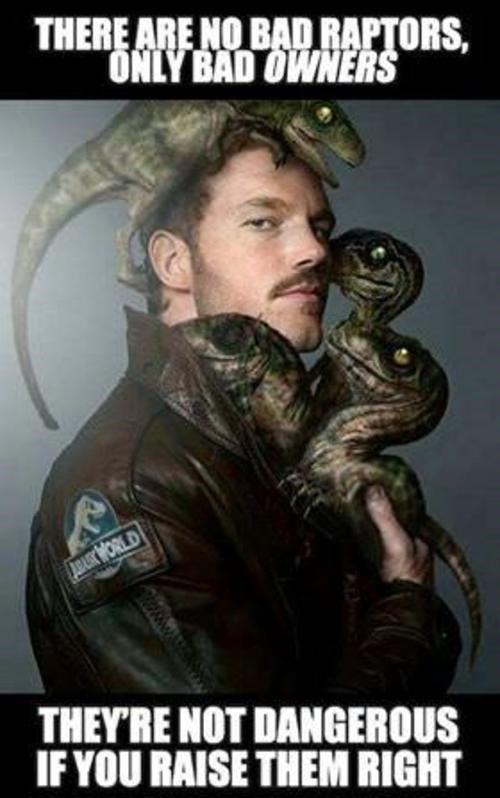 Photo caption - THERE ARE NO BAD RAPTORS, ONLY BAD OWNERS JBARKWORLD THEY'RE NOT DANGEROUS IF YOU RAISE THEM RIGHT