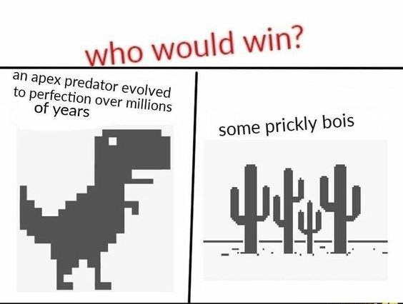 Text - who would win? an apex predator evolved to perfection over millions of years some prickly bois
