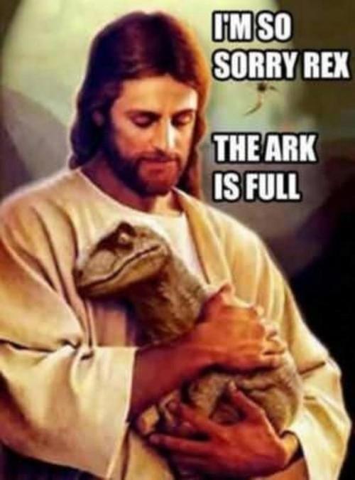 Album cover - IMSO SORRY REX THE ARK IS FULL