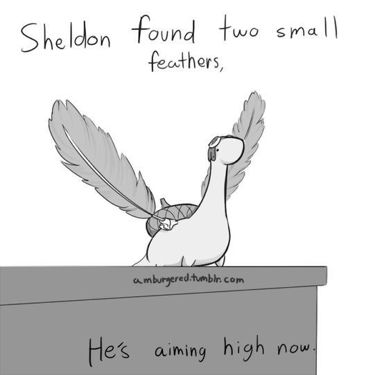 Text - She ldon found two small feathers, amburgered.tumbln com He's aiming high now.