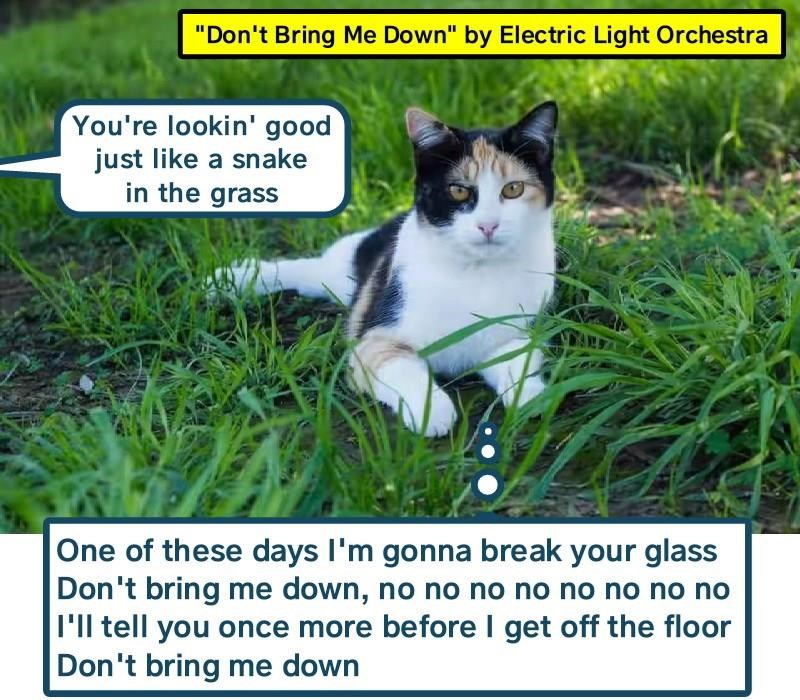 """""""Don\'t Bring Me Down"""" by Electric Light Orchestra"""