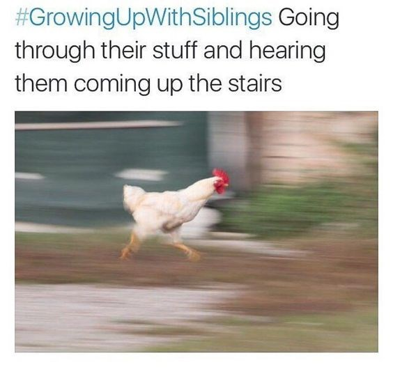 Chicken - #GrowingUpWithSiblings Going through their stuff and hearing them coming up the stairs
