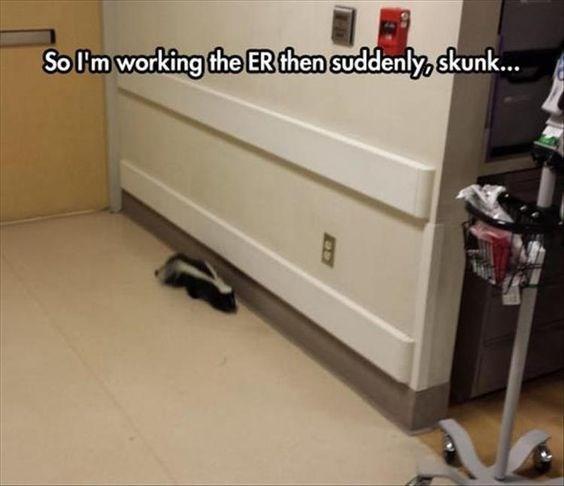 meme - Floor - So lm working the ER then suddenly, skunk...