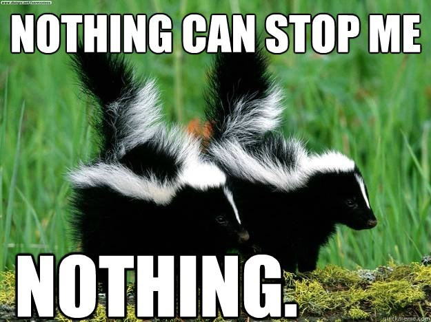 meme - Striped Skunk - CEY dings ant/ere ret NOTHING CAN STOP ME NOTHING ufckmeme.com