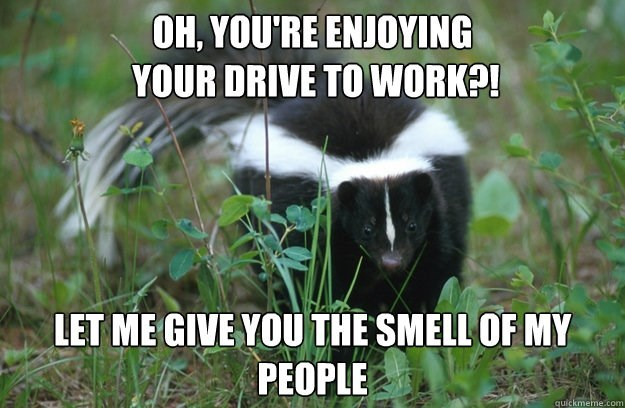 meme - Striped Skunk - OH, YOU'RE ENJOYING YOUR DRIVE TO WORK?! LET ME GIVE YOU THE SMELL OF MY PEOPLE quickmeme.com