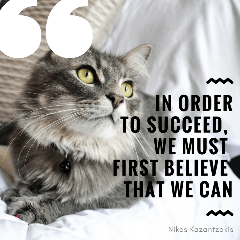 Cat - IN ORDER TO SUCCEED, WE MUST FIRST BELIEVE THAT WE CAN Nikos Kazantzakis