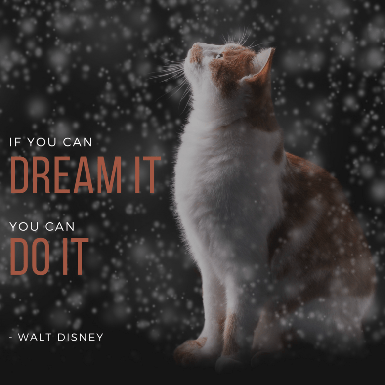 Cat - IF YOU CAN DREAMIT YOU CAN DO IT - WALT DISNEY