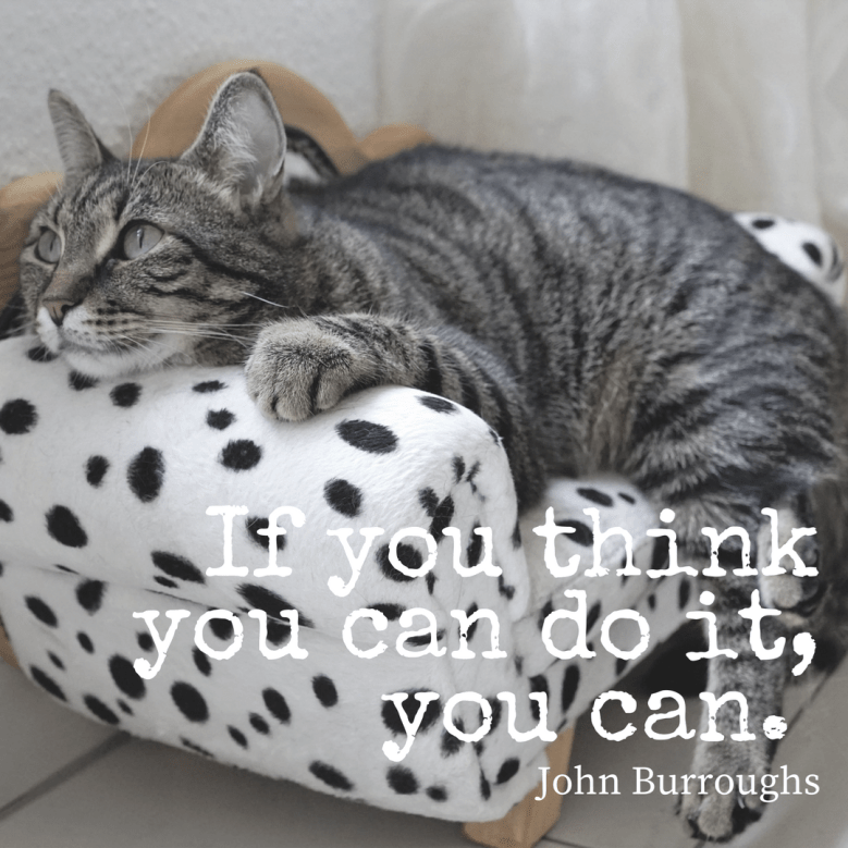 Cat - you think you can doit, VOu can. John Burroughs