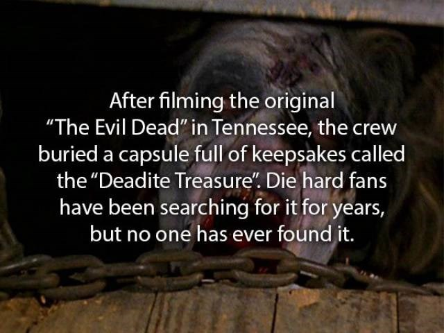 """movie fact - Text - After filming the original """"The Evil Dead"""" in Tennessee, the crew buried a capsule full of keepsakes called the """"Deadite Treasure"""". Die hard fans have been searching for it for years, but no one has ever found it."""