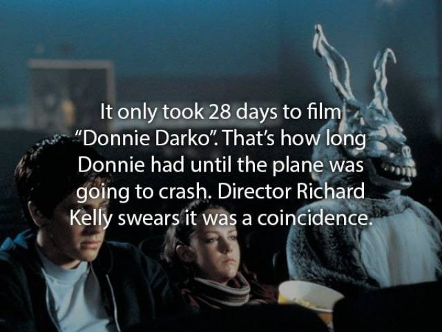 """movie fact - Font - It only took 28 days to film Donnie Darko"""". That's how long Donnie had until the plane was going to crash. Director Richard. Kelly swears it was a coincidence."""