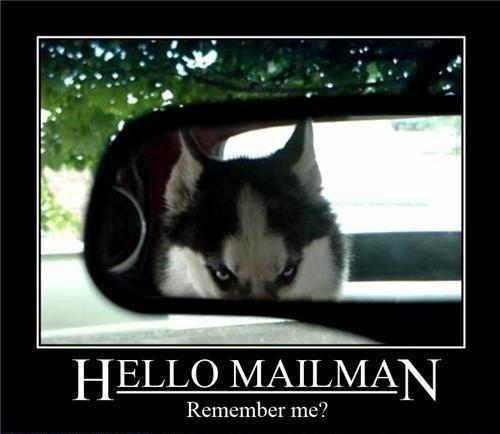 Photo caption - HELLO MAILMAN Remember me?