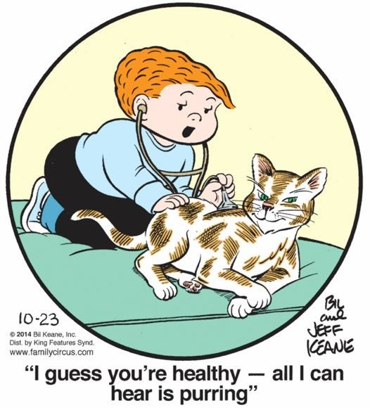 """Cartoon - 10-23 2014 Bil Keane, Inc Dist by King Features Synd. www.familycircus.com JEFF CEANE """"I guess you're healthy all can hear is purring"""""""