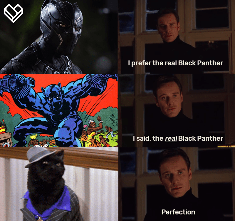 Fictional character - I prefer the real Black Panther I said, the real Black Panther Perfection
