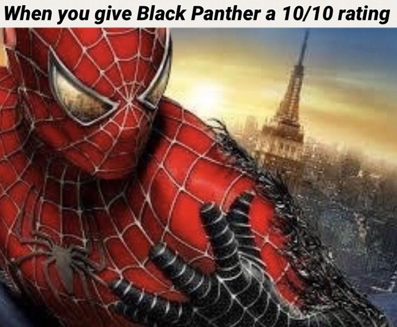 dank meme - Spider-man - When you give Black Panther a 10/10 rating