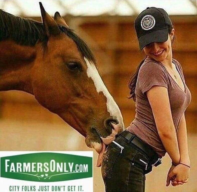 dank meme - Horse - FARMERSONLY.COM CITY FOLKS JUST DON'T GET IT.