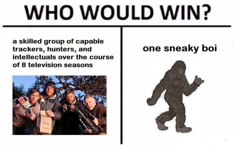 Funny meme about sasquatch.