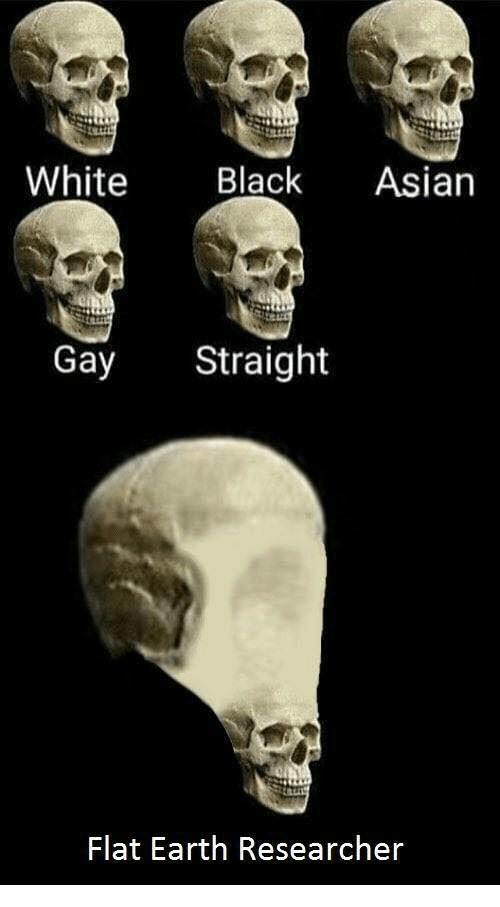 meme - Skull - White Black Asian Gay Straight Flat Earth Researcher