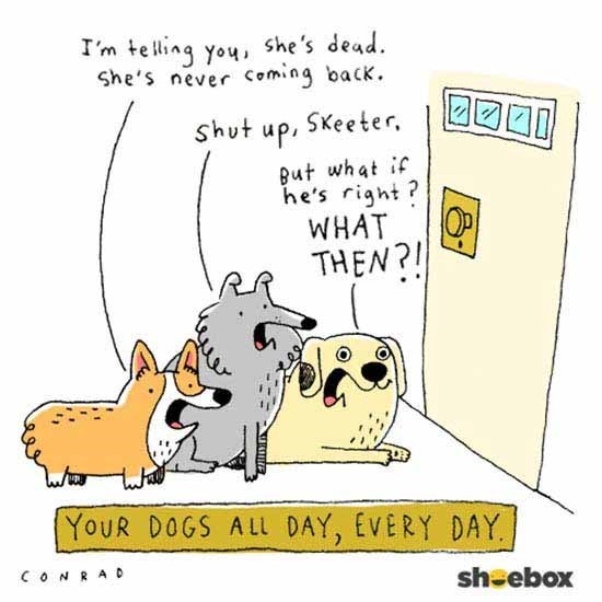 Cartoon - I'm teling you she's dead. She's never Coming back. Shut up, SKeeter But what if he's right? OP WHAT THEN? YoUR DOGS ALL DAY, EVERY DAY CONRAD shoebox