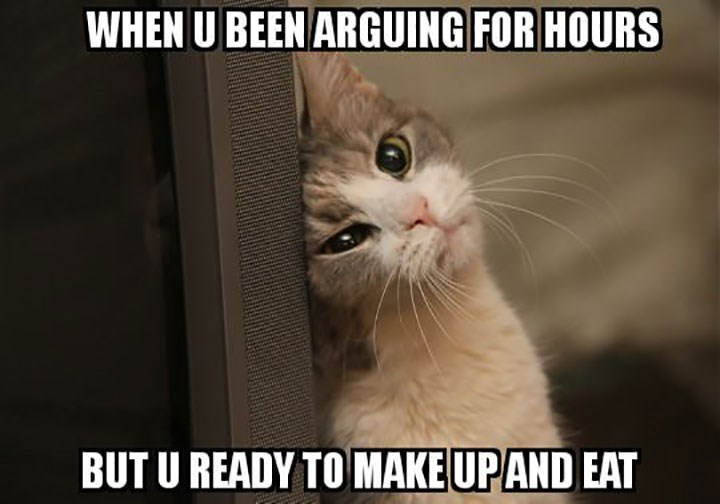 caturday - Cat - WHEN U BEEN ARGUING FOR HOURS BUT U READY TO MAKE UPAND EAT