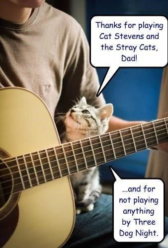 meme - Guitar - Thanks for playing Cat Stevens and the Stray Cats, Dad! ...and for not playing anything by Three Dog Night