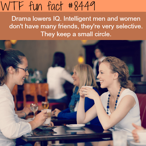 Text - WTF fun fact #8449 Drama lowers IQ. Intelligent men and women don't have many friends, they're very selective. They keep a small circle.