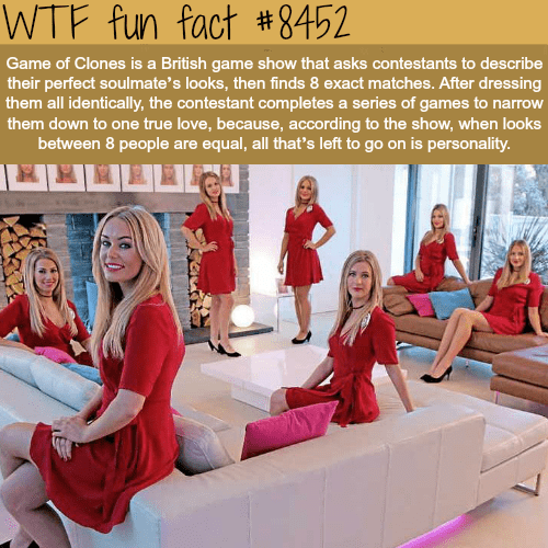 Furniture - WTF fun fact #8452 Game of Clones is a British game show that asks contestants to describe their perfect soulmate's looks, then finds 8 exact matches. After dressing them all identically, the contestant completes a series of games to narrow them down to one true love, because, according to the show, when looks between 8 people are equal, all that's left to go on is personality.