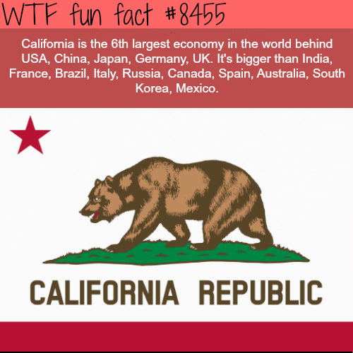 Grizzly bear - WTF fun fact #8455 California is the 6th largest economy in the world behind USA, China, Japan, Germany, UK. It's bigger than India, France, Brazil, Italy, Russia, Canada, Spain, Australia, South Korea, Mexico. CALIFORNIA REPUBLIC
