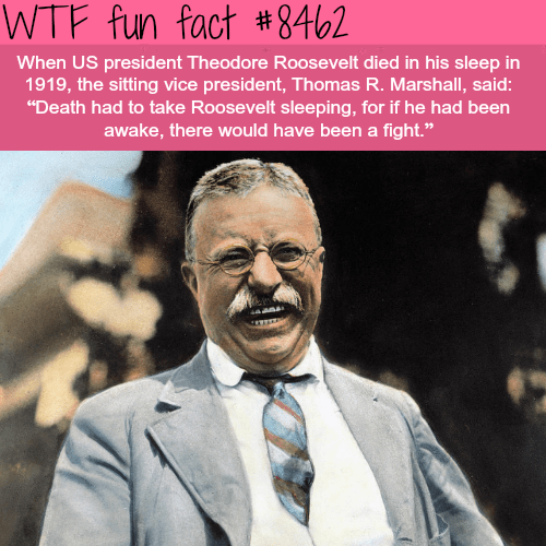 """Text - WTF fun fact #8462 When US president Theodore Roosevelt died in his sleep in 1919, the sitting vice president, Thomas R. Marshall, said: """"Death had to take Roosevelt sleeping, for if he had been awake, there would have been a fight."""""""