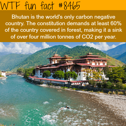 Natural landscape - WTF fun fact #8465 Bhutan is the world's only carbon negative country. The constitution demands at least 60% of the country covered in forest, making it a sink of over four million tonnes of CO2 per year.