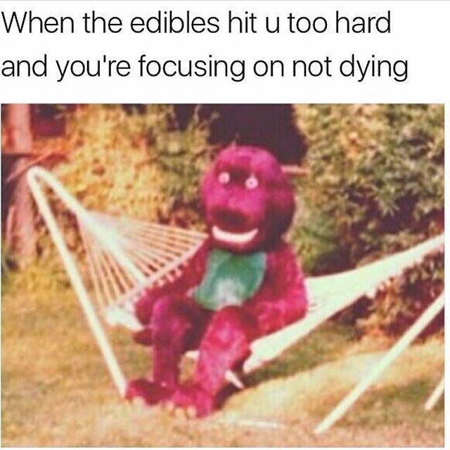 meme - Organism - When the edibles hit u too hard and you're focusing on not dying