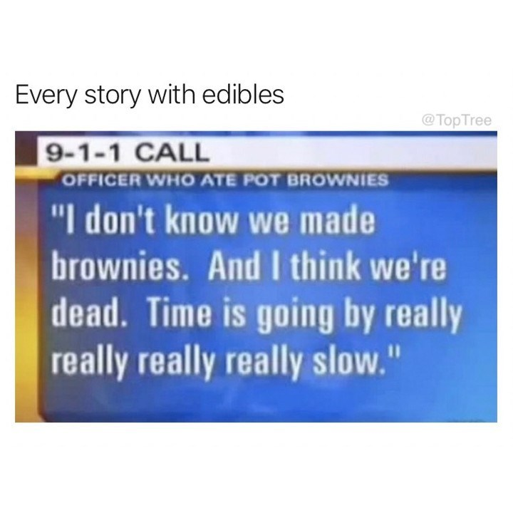 """meme - Text - Every story with edibles @Top Tree 9-1-1 CALL OFFICER WHO ATE POT BROWNIES """"I don't know we made brownies. And I think we're dead. Time is going by really really really really slow."""""""