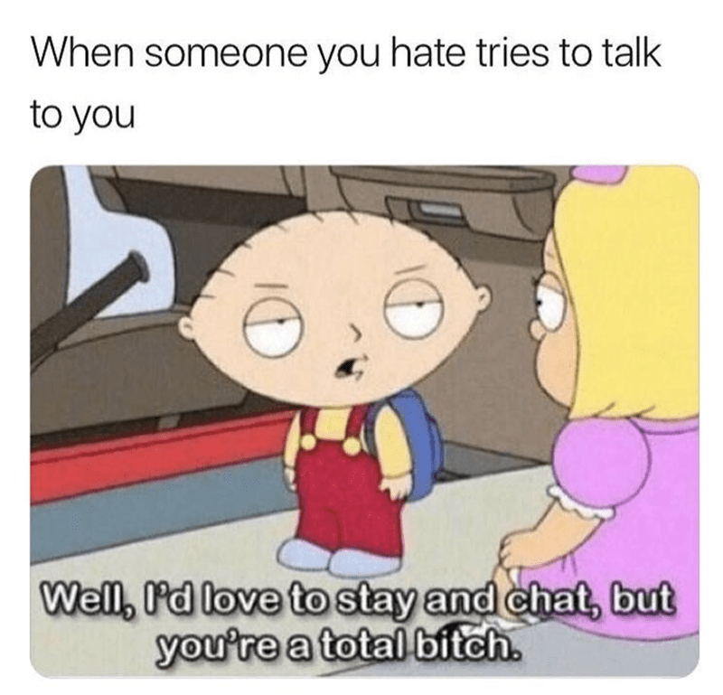 Stewie from Family Guy meme about not wanting to talk to someone