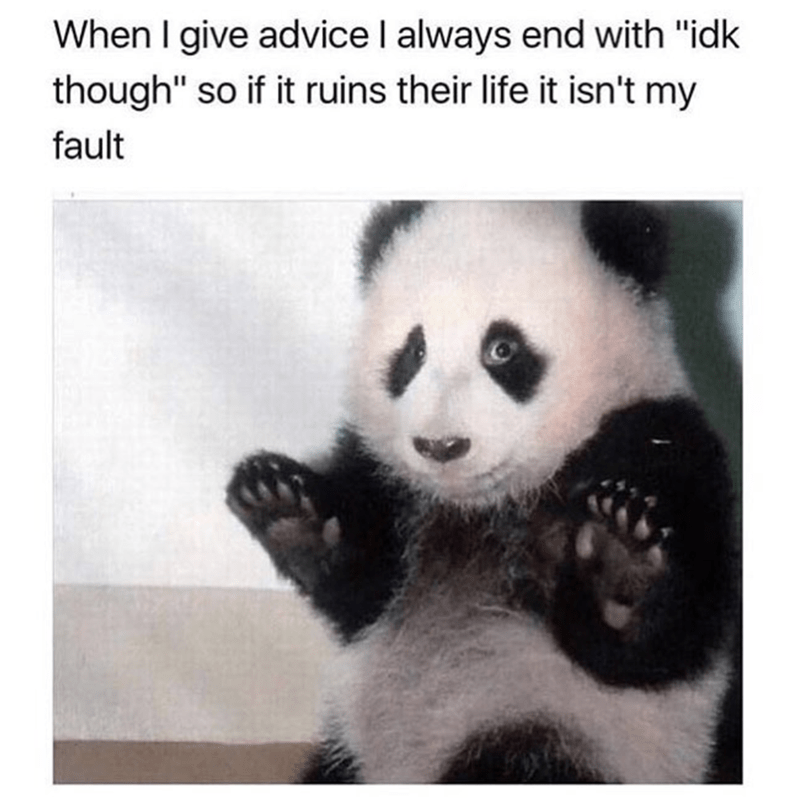 surrendering panda meme for ending all advice in i don't know, though just in case it ruins their life