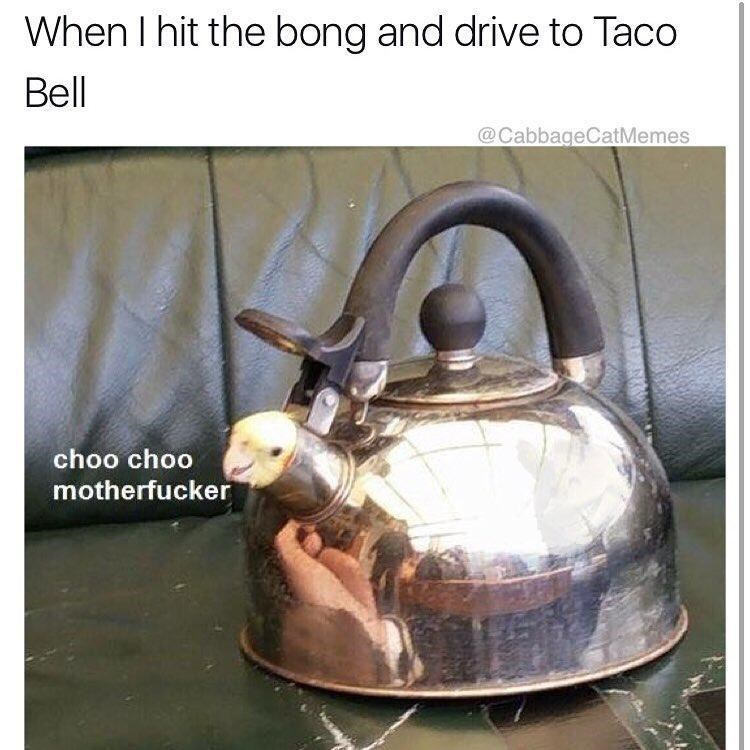 Funny meme about getting stoned and going to taco bell.