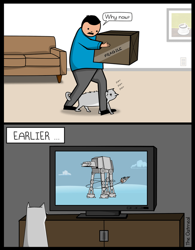 Funny meme about cats and star wars.