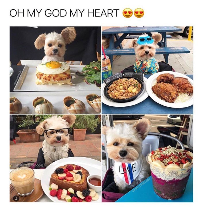 Food - OH MY GOD MY HEART AND aropercEFoODIE CONE gPOPEYETHEFOODE