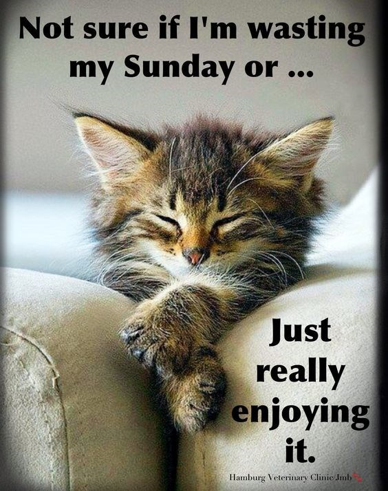 Sunday meme about enjoying the weekend to its fullest