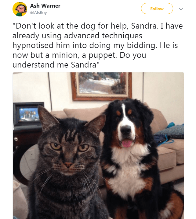 "Canidae - Ash Warner Follow @Als Boy ""Don't look at the dog for help, Sandra. I have already using advanced techniques hypnotised him into doing my bidding. He is now but a minion, a puppet. Do you understand me Sandra"""