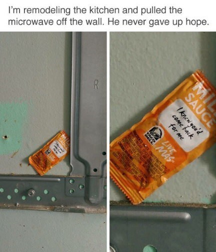 Snack - and remodeling the kitchen microwave pulled the gave up hope. off the wall. He never FR MIL SAUCE Iknew you'd cOme back for me LIVE TAGO AL O saa