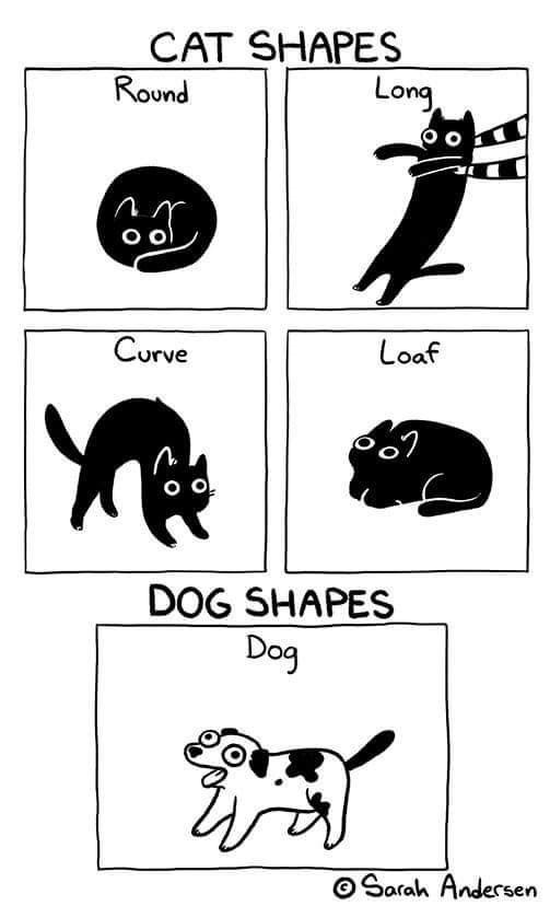 Tail - CAT SHAPES Round Long Curve Loaf O DOG SHAPES Dog o Sarah Andesrsen