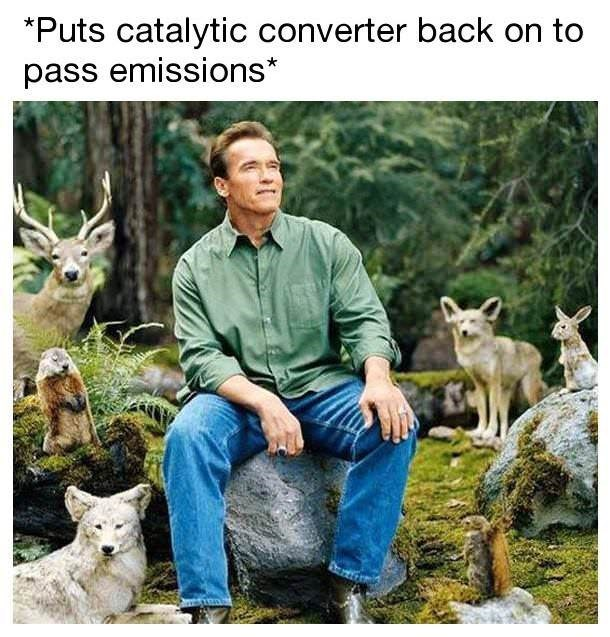Wildlife - Puts catalytic converter back on to pass emissions*