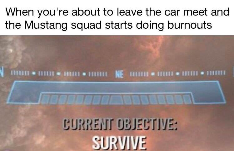 Text - When you're about to leave the car meet and the Mustang squad starts doing burnouts CURRENT OBJECTIVE: SURVIVE