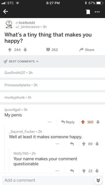 Text - 67% STC 8:27 PM ? u/_birdonawire 3h r/AskReddit What's a tiny thing that makes you happy? 262 Share 244 BEST COMMENTS GunSmith137 3h Princessofplants 3h munkyphunk 1h Ipconfigall 3h My penis Reply 160 Squirrel_Fucker 2h Well at least it makes someone happy. 89 Wolfy TAD 2h Your name makes your comment questionable 22 Add a comment