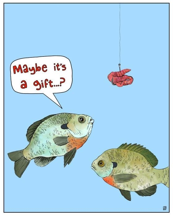 Fish - Maybe it's a gift...? లో