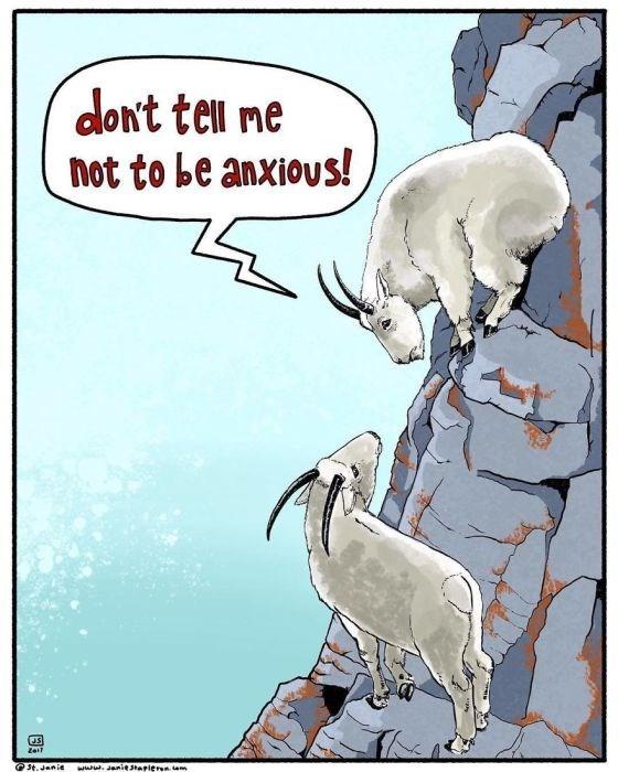 Cartoon - dont tell ne not to be anxious! St.Janie www.aniesapier