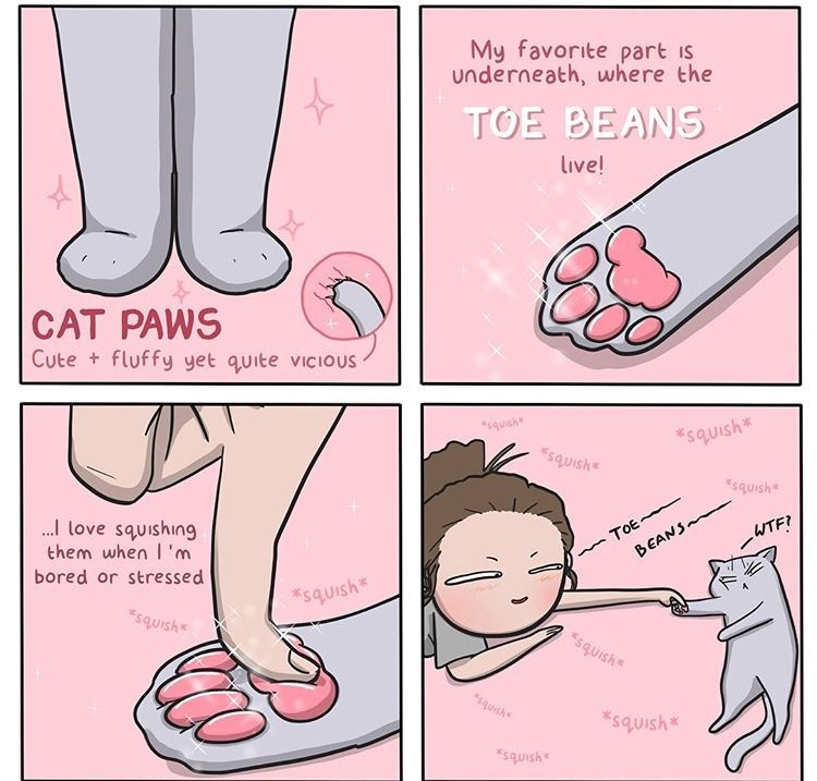 cute Cats - 9132266496