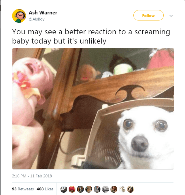 Nose - Ash Warner Follow @AlsBoy You may see a better reaction to a screaming baby today but it's unlikely 2:16 PM 11 Feb 2018 93 Retweets 408 Likes