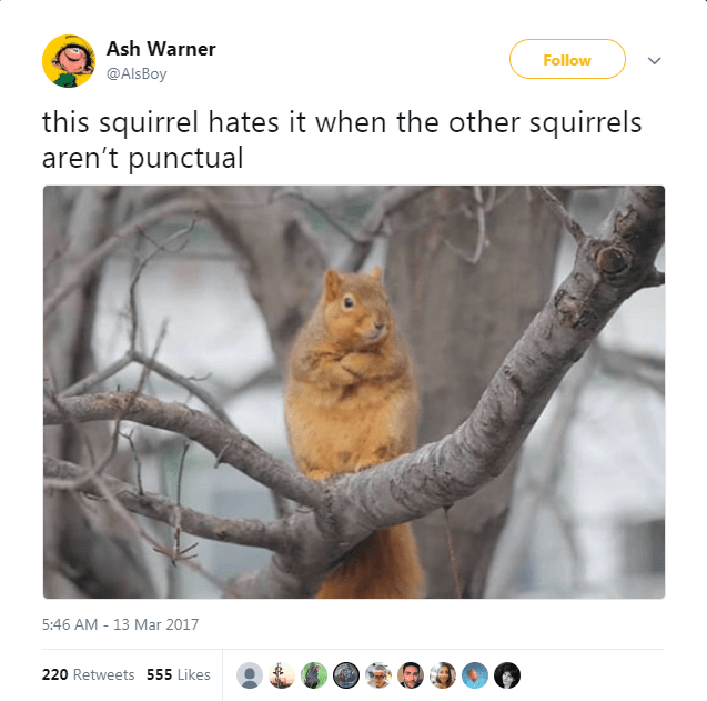 Branch - Ash Warner Follow @AlsBoy this squirrel hates it when the other squirrels aren't punctual 5:46 AM-13 Mar 2017 220 Retweets 555 Likes