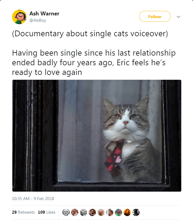 Cat - Ash Warner Follow @AlsBoy (Documentary about single cats voiceover) Having been single since his last relationship ended badly four years ago, Eric feels he's ready to love again 10:35 AM 9 Feb 2018 29 Retweets 109 Likes