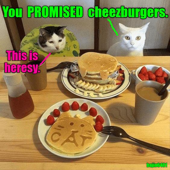 Cheezburger Image 9132540160